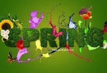 تصاویر پس زمینه فصل بهار
