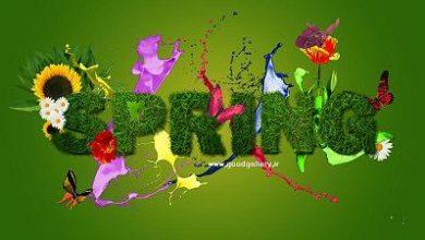 Photo of والپیپر زیبای بهار (کیفیت HD)