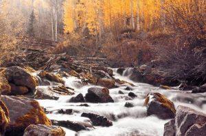 رودخانه سفید در جنگل ملی کلرادو