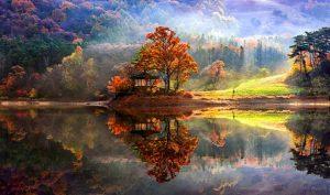 چشم انداز های زیبا از بازتاب در طبیعت