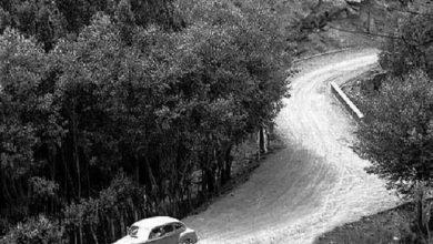 Photo of عکس قدیمی جاده چالوس