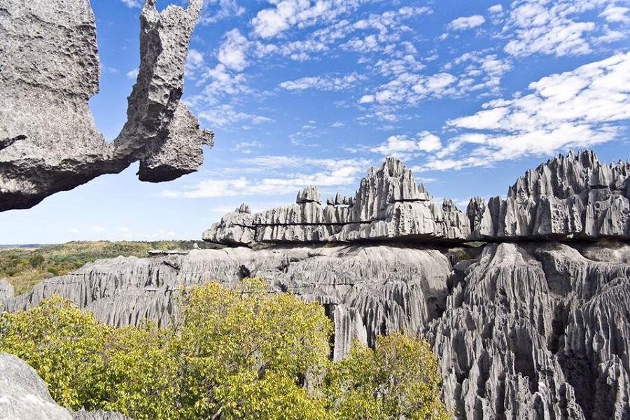 جاهای دیدنی جهان , جنگل سنگی ماداگاسکار