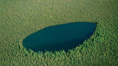 دریاچه جنگلی روسیه