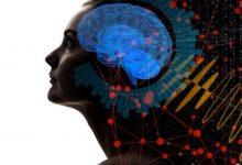 Photo of مشارکت در حل مسئله با اتصال مغز ۳ انسان
