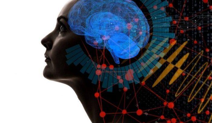 مشارکت در حل مسئله با اتصال مغز 3 انسان