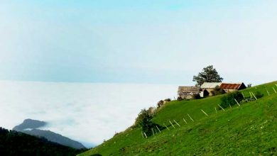 Photo of دهکده مازیچال کجاست