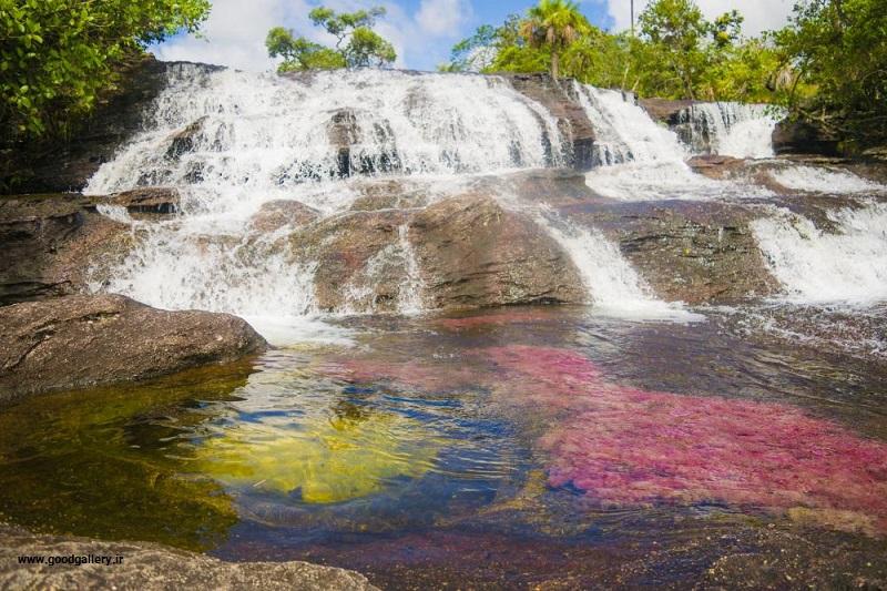 رودخانه کانیو کریستالس در کلمبیا