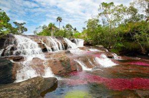 پارک ملی ماکارنا کلمبیا