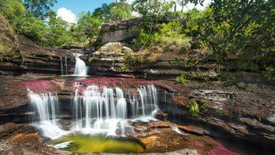 Photo of رودخانه کانیو کریستالس در کلمبیا