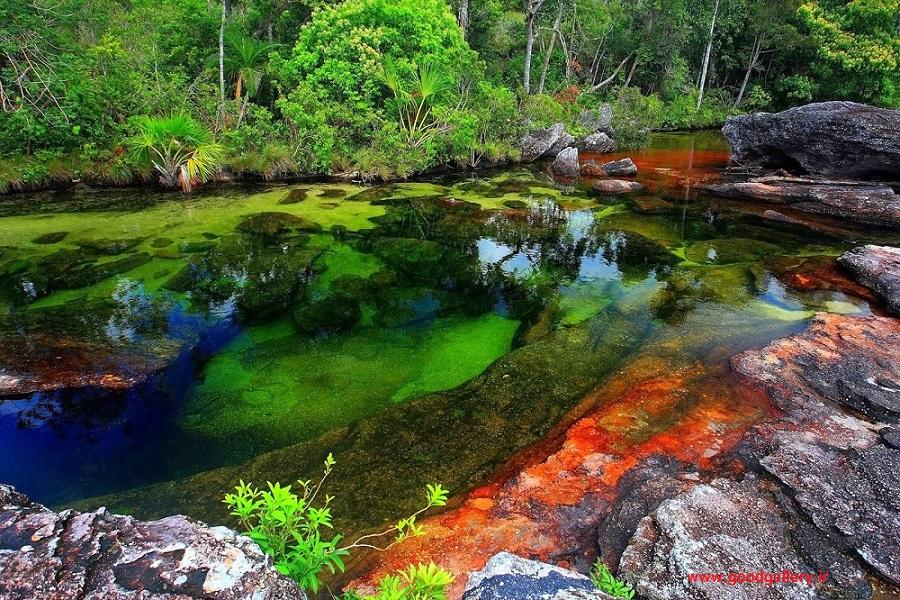 رودخانه رنگین کمان در پارک ملی ماکارنا کلمبیا , رودخانه رنگین کمان کلمبیا